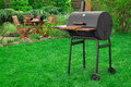 Scene Of Barbecue Grill Party On Lawn In The Backyard Stock Image - 72536571