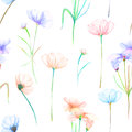 A Seamless Floral Pattern With Watercolor Hand-drawn Tender Pink And Purple Cosmos Flowers Stock Image - 72705971