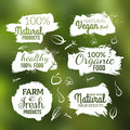 Vector Natural Organic Food Label. Farm Products Eco Design Watercolor Style Stock Photo - 72713560