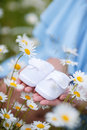 An Expectant Mother With A White Baby Booties Royalty Free Stock Photography - 72786927