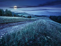 Country Road Through A Meadow At Night Royalty Free Stock Image - 72791776
