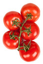 Branch Of Tomatoes With Water Droplets Isolated Royalty Free Stock Photos - 7285948