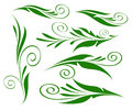 Floral Design Elements Green On White Isolated. Stock Photo - 72861540