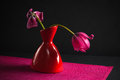 Pink tulips in a vase Stock Images