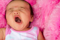 The Big Yawn Royalty Free Stock Image