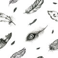 Vintage Seamless  Graphic Pattern With Hand-drawn Feathers. Flyi Royalty Free Stock Photos - 72902028