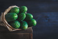 Cucumbers Royalty Free Stock Photography - 72941797