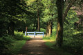 Beautiful Entrance With Fence To Park. Secret Garden Royalty Free Stock Photo - 72998535