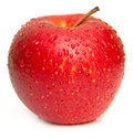 Wet Red Apple 2 Stock Photography - 7309252