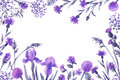 Floral Frame With Lilac Wildflowers. Royalty Free Stock Photography - 73009327