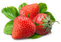 Strawberry Stock Image - 7314331