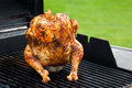 Homemade Grilled Beer Can Chicken Royalty Free Stock Images - 73101749