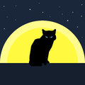Black Cat Silhouette Against The Moon. Nature And Animals Theme. Stock Photography - 73105402