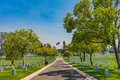 Lane In Military Cemetary Royalty Free Stock Photography - 73147047