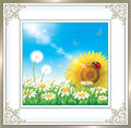 Card With Daisies And Sunflowers Royalty Free Stock Photography - 73182487