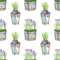 Seamless Pattern Of The Watercolor Crocus Flowers In A Rusty Buckets Royalty Free Stock Image - 73218316
