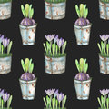 Seamless Pattern Of The Watercolor Crocus Flowers In A Rusty Buckets Royalty Free Stock Photos - 73219148