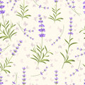Lavender Seamless Vector Pattern For Fabric, Paper Royalty Free Stock Photo - 73264255