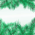 Framework From Pine Branches Royalty Free Stock Photography - 7335707