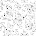 Butterfly Hand Drawing Seamless Pattern Sketch. Black And White Butterfly Background. Vector Illustration Stock Images - 73382424