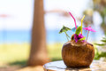 Coconut With Drinking Straw, Umbrellas And Flowers Stock Photo - 73419670