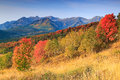 Colorful Autumn Sunrise In The Utah Mountains. Stock Images - 73431394