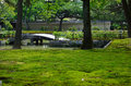 Moss Covered Japanese Garden, Kyoto Japan. Royalty Free Stock Photos - 73481248
