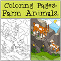 Coloring Pages: Farm Animals. Father Goat With His Little Baby Royalty Free Stock Image - 73498146