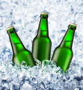 Beer Is In Ice Stock Image - 7351431