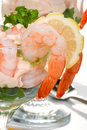 Shrimp Cocktail Royalty Free Stock Photography - 7368817