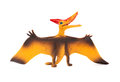 Front View Orange Pterosaurs Toy On White Background Royalty Free Stock Photo - 73617305