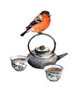 Bullfinch Bird And Tea Set. Watercolor Royalty Free Stock Images - 73685669