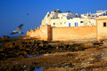 Old Fortress Of Essaouira Royalty Free Stock Image - 7377376