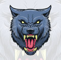 Wolf Head Royalty Free Stock Image - 73708436