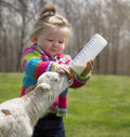 Cute Little Girl With Lamb Royalty Free Stock Photos - 73709828
