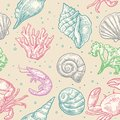 Seamless Pattern Sea Shell, Coral, Crab And Shrimp.  Stock Images - 73783614
