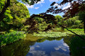 Japanese Garden Of Heian Shrine, Kyoto Japan. Stock Photography - 73794162