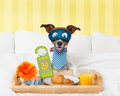 Do Not Disturb Sign With Dog Royalty Free Stock Images - 73801699