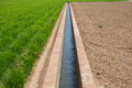 Horchata Plantation And Irrigation Canal Stock Images - 73806214