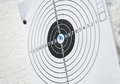 Target Practice Paper Close-up Black White Blue Ammo Hole Royalty Free Stock Photos - 73839298