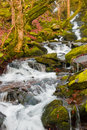 Waterfall Stock Images - 7391804