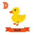 Duck. D Letter. Cute Children Animal Alphabet In Vector. Funny C Royalty Free Stock Image - 73902446