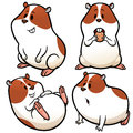Hamster Royalty Free Stock Images - 73933369