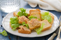 Toasts With Pate On White Dish Royalty Free Stock Image - 73949276
