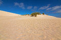 High Sand Hill Ridge From Afar At Little Sahara White Sand Dune Royalty Free Stock Photography - 73954177