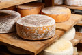 Big Yellow Goat Cheese Heads Royalty Free Stock Image - 74011106