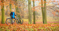 Happy Active Woman Riding Bike In Autumn Park. Stock Image - 74027461