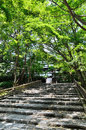 Approach Path Of Ryoanji Temple, Kyoto Japan. Royalty Free Stock Images - 74057119