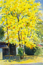 Watercolor Painting Yellow, Orange Color Of Golden Shower Tree Royalty Free Stock Image - 74084446