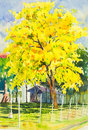 Watercolor Painting Yellow, Orange Color Of Golden Shower Tree Flowers Stock Photography - 74084512